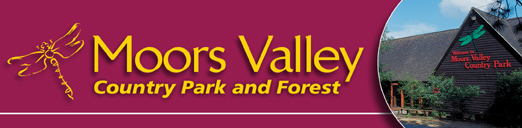 Moors Valley Country Park & Forest